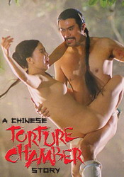 A Chinese Torture Chamber Story I